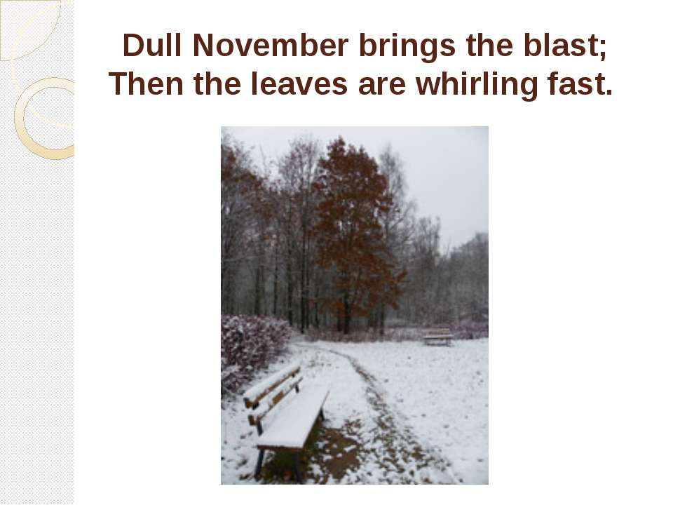 Dull November brings the blast; Then the leaves are whirling fast.