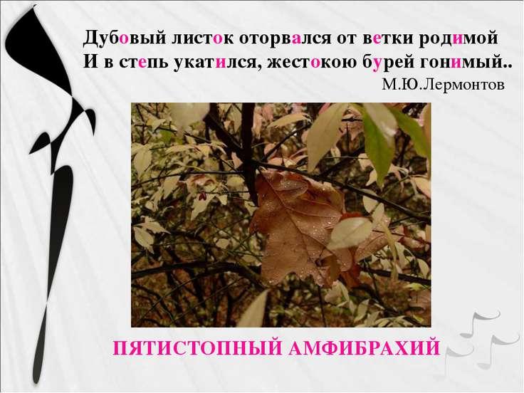 ПЯТИСТОПНЫЙ АМФИБРАХИЙ Дубовый листок оторвался от ветки родимой И в степь ук...