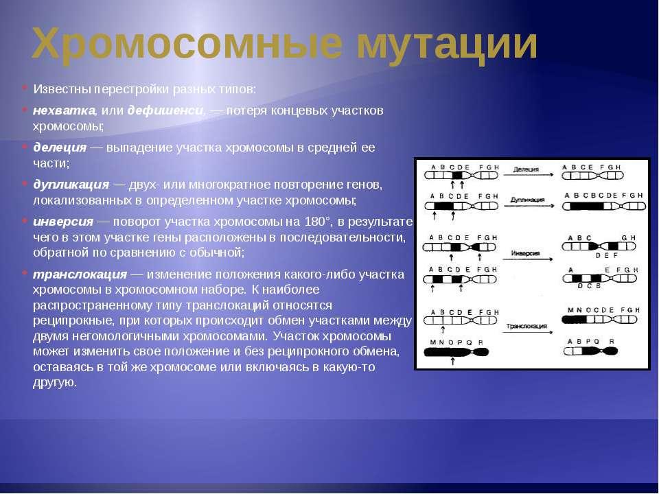 Хромосомные мутации Известны перестройки разных типов: нехватка, или дефишенс...