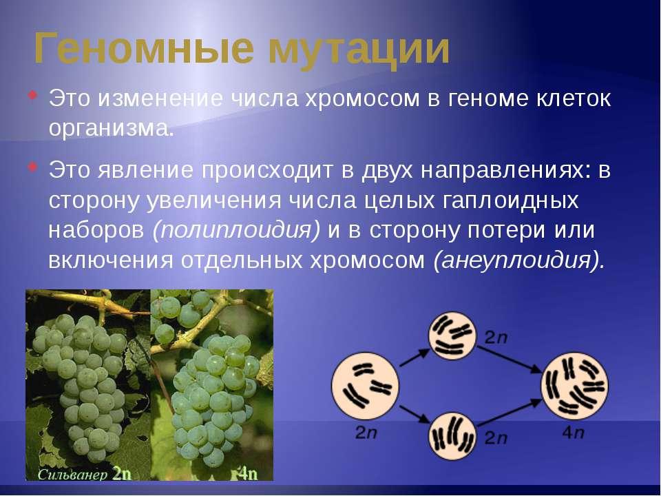 Геномные мутации Это изменение числа хромосом в геноме клеток организма. Это ...