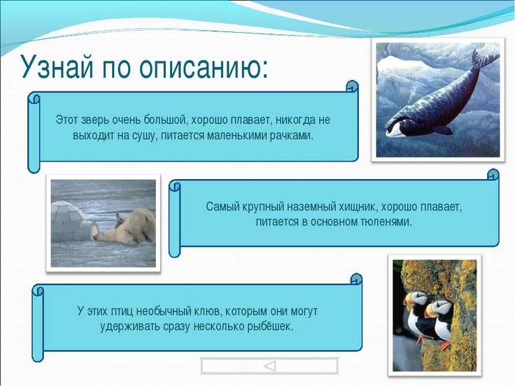 Узнай по описанию: Этот зверь очень большой, хорошо плавает, никогда не выход...