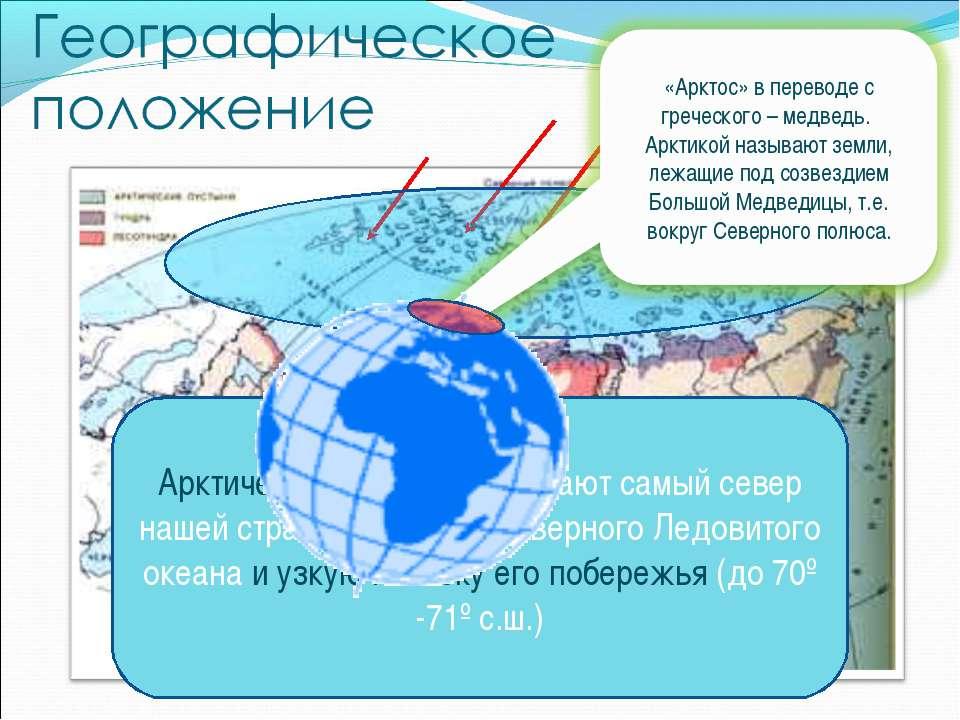 Арктические пустыни занимают самый север нашей страны – острова Северного Лед...