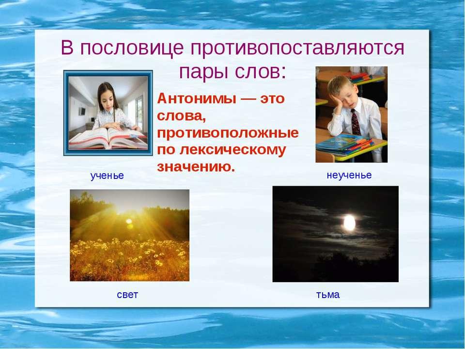 В пословице противопоставляются пары слов: ученье неученье свет тьма Антонимы...