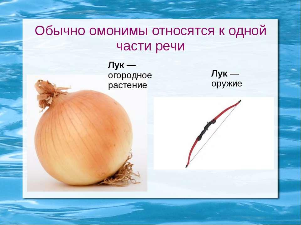 Обычно омонимы относятся к одной части речи Лук — огородное растение Лук — ор...