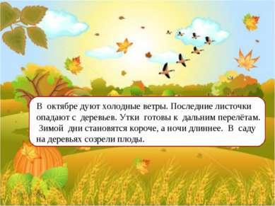 В октябре дуют холодные ветры. Последние листочки опадают с деревьев. Утки го...