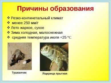 Резко-континетальный климат менее 250 мм/г Лето жаркое, сухое Зима холодная, ...