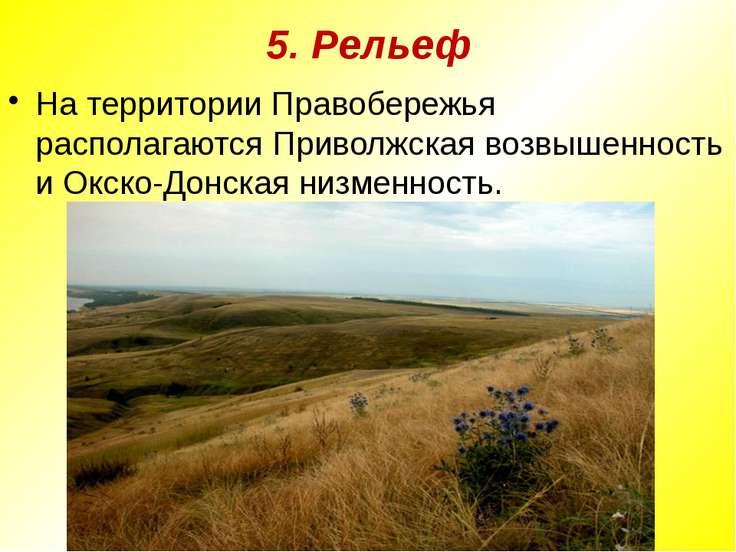 5. Рельеф На территории Правобережья располагаются Приволжская возвышенность ...