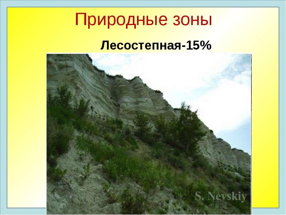 Природные зоны Лесостепная-15%
