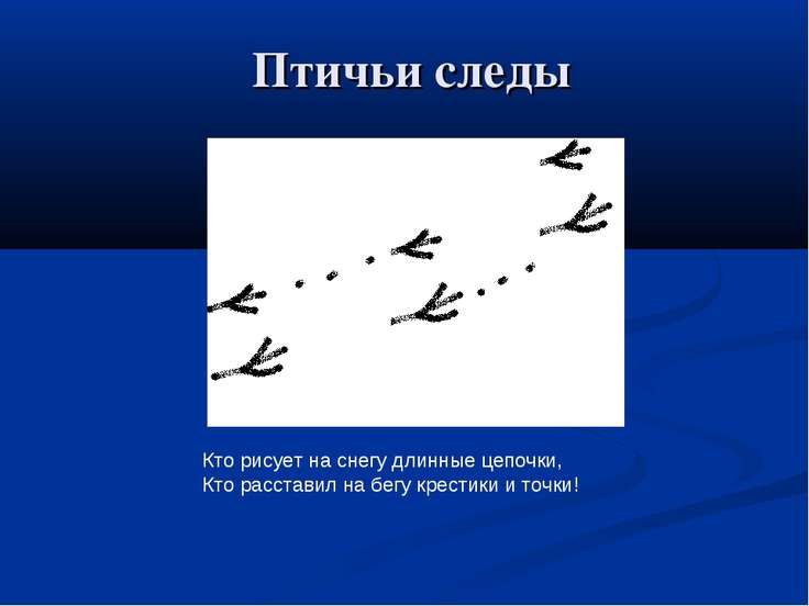 Птичьи следы Кто рисует на снегу длинные цепочки, Кто расставил на бегу крест...