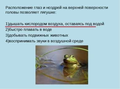 Расположение глаз и ноздрей на верхней поверхности головы позволяет лягушке: ...