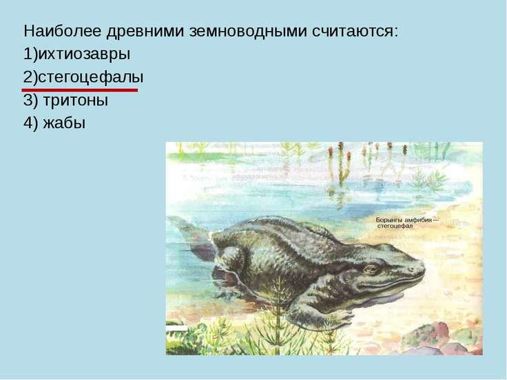 Наиболее древними земноводными считаются: 1)ихтиозавры 2)стегоцефалы 3) трито...