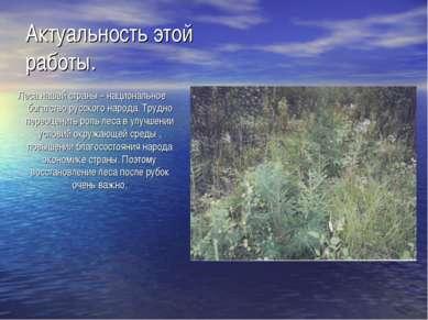 Актуальность этой работы. Леса нашей страны – национальное богатство русского...