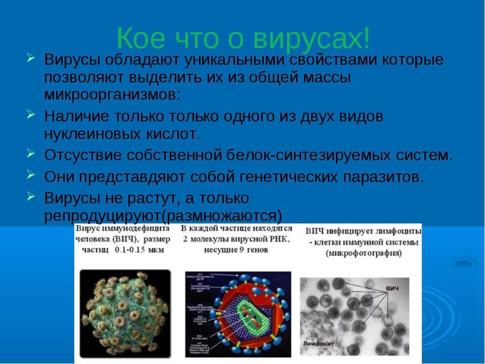 Кое что о вирусах! Вирусы обладают уникальными свойствами которые позволяют в...