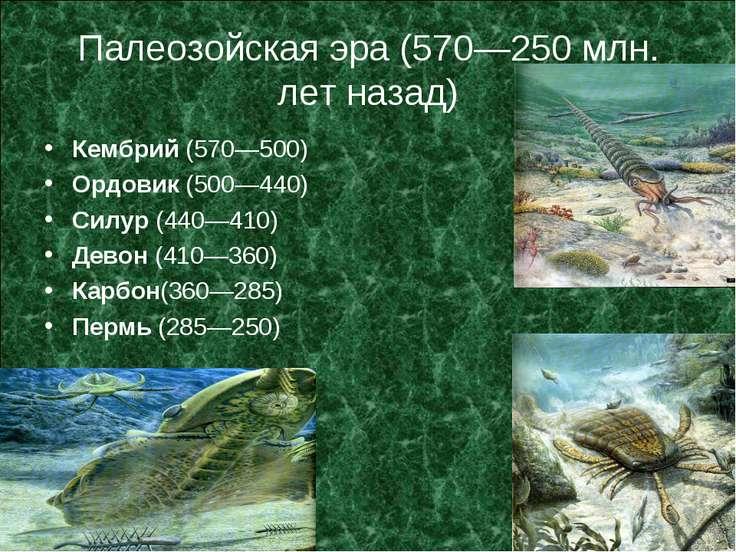 Палеозойская эра (570—250 млн. лет назад) Кембрий (570—500) Ордовик (500—440)...