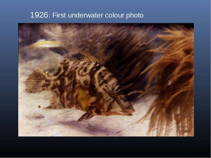 1926: First underwater colour photo