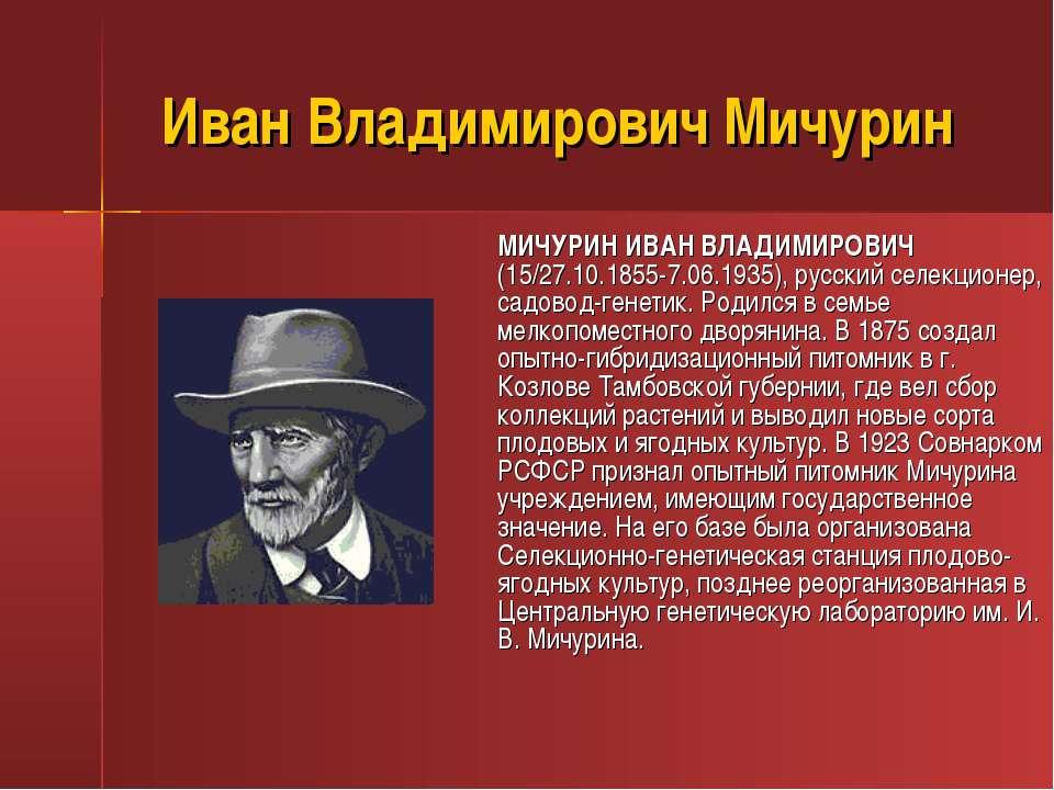 Иван Владимирович Мичурин МИЧУРИН ИВАН ВЛАДИМИРОВИЧ (15/27.10.1855-7.06.1935)...