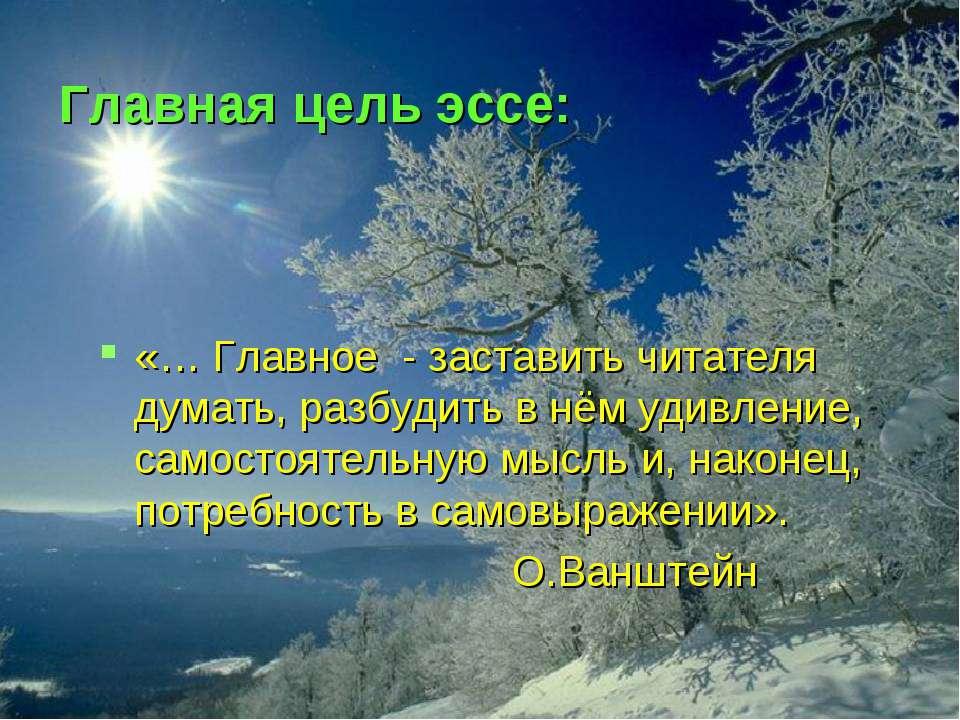 Главная цель эссе: «… Главное - заставить читателя думать, разбудить в нём уд...