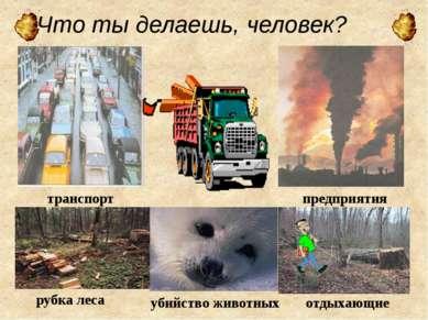 Что ты делаешь, человек? транспорт предприятия рубка леса отдыхающие убийство...