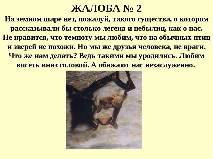 ЖАЛОБА № 2 На земном шаре нет, пожалуй, такого существа, о котором рассказыва...