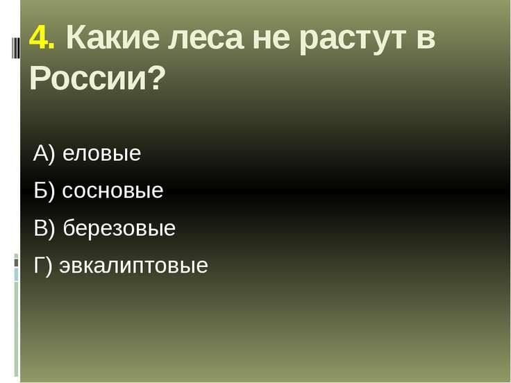 4. Какие леса не растут в России? А) еловые Б) сосновые В) березовые Г) эвкал...