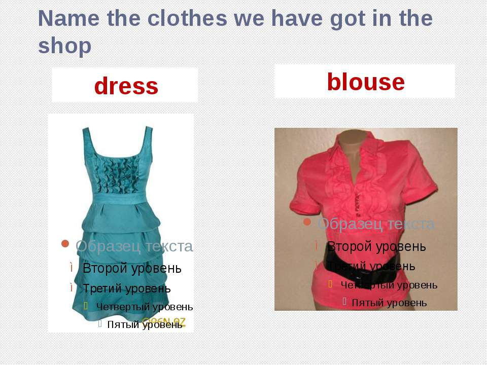 Name the clothes we have got in the shop dress blouse
