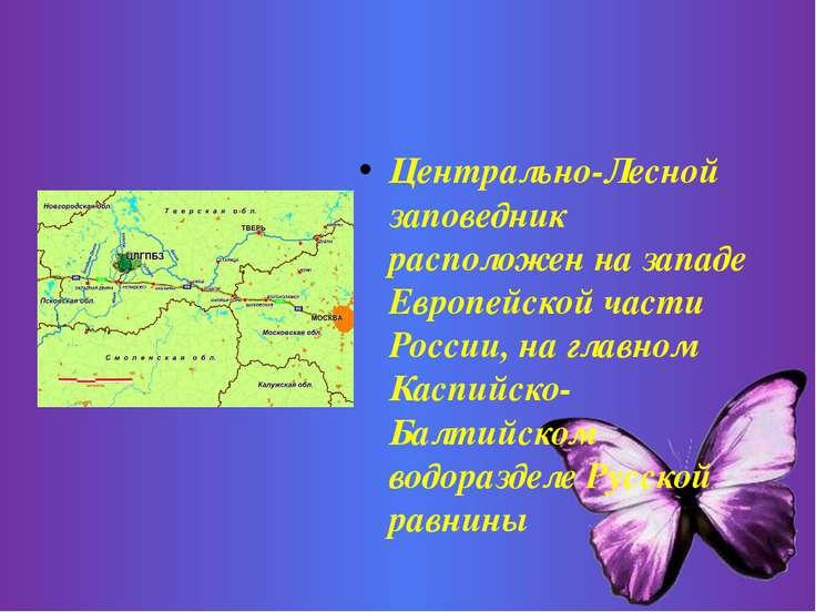 Центрально-Лесной заповедник расположен на западе Европейской части России, н...
