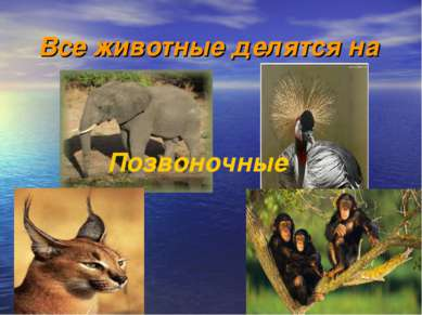 Все животные делятся на Позвоночные