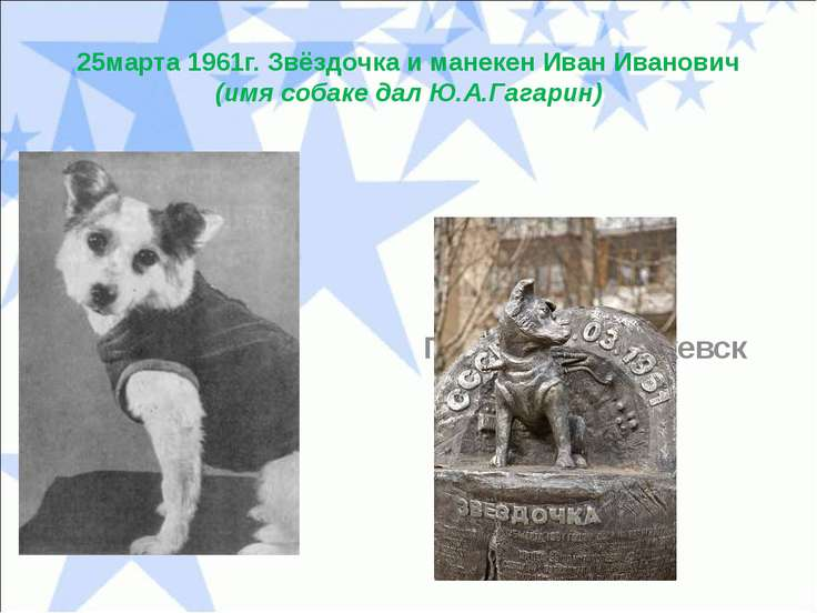 25марта 1961г. Звёздочка и манекен Иван Иванович (имя собаке дал Ю.А.Гагарин)...