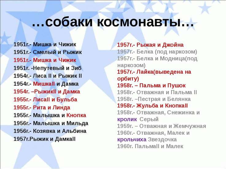 …собаки космонавты… 1951г.- Мишка и Чижик 1951г.- Смелый и Рыжик 1951г.- Мишк...