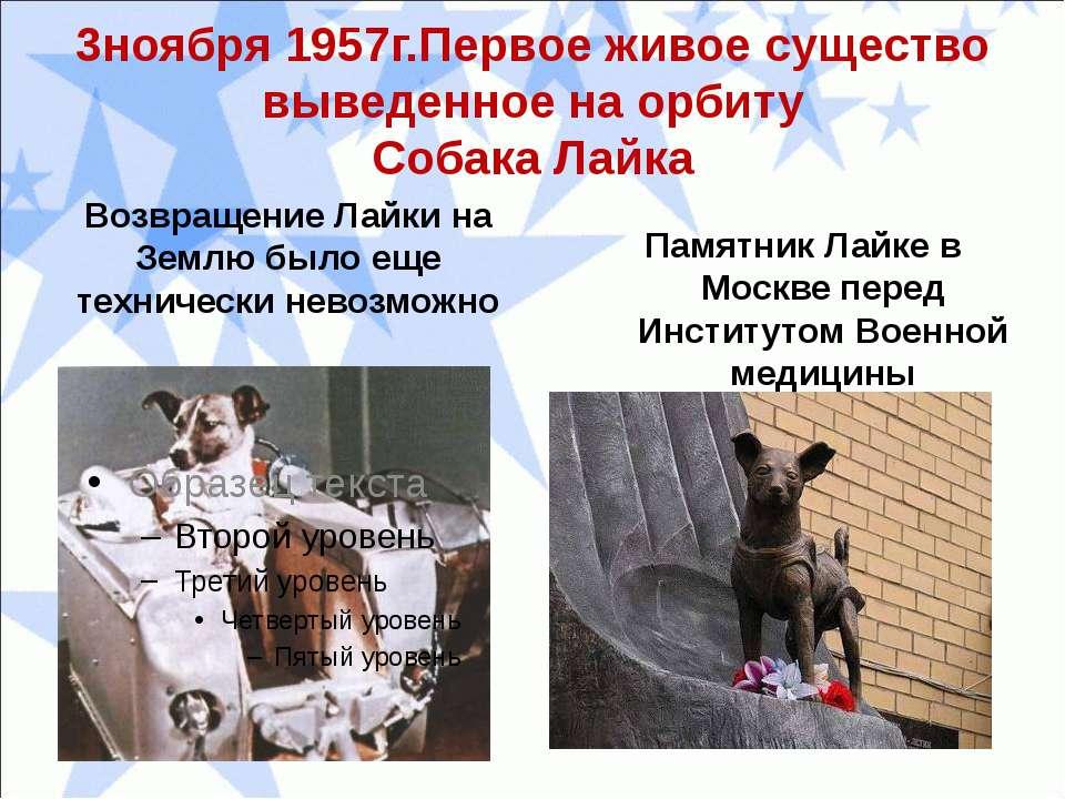 3ноября 1957г.Первое живое существо выведенное на орбиту Собака Лайка Возвращ...