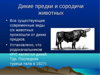 Дикие предки и сородичи животных Все существующие современные виды с/х животн...