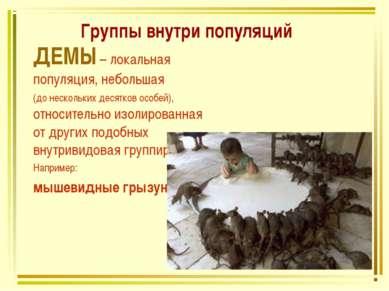 Группы внутри популяций ДЕМЫ – локальная популяция, небольшая (до нескольких ...