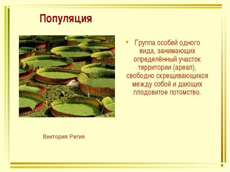 Популяция Группа особей одного вида, занимающих определённый участок территор...