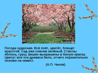 Погода чудесная. Всё поёт, цветёт, блещет красотой. Сад уже совсем зелёный. С...