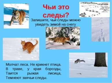 Чьи это следы? Запишите, чьи следы можно увидеть зимой на снегу Молчат леса. ...
