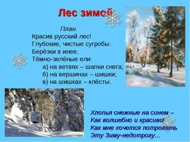 Лес зимой План. Красив русский лес! Глубокие, чистые сугробы. Берёзки в инее....