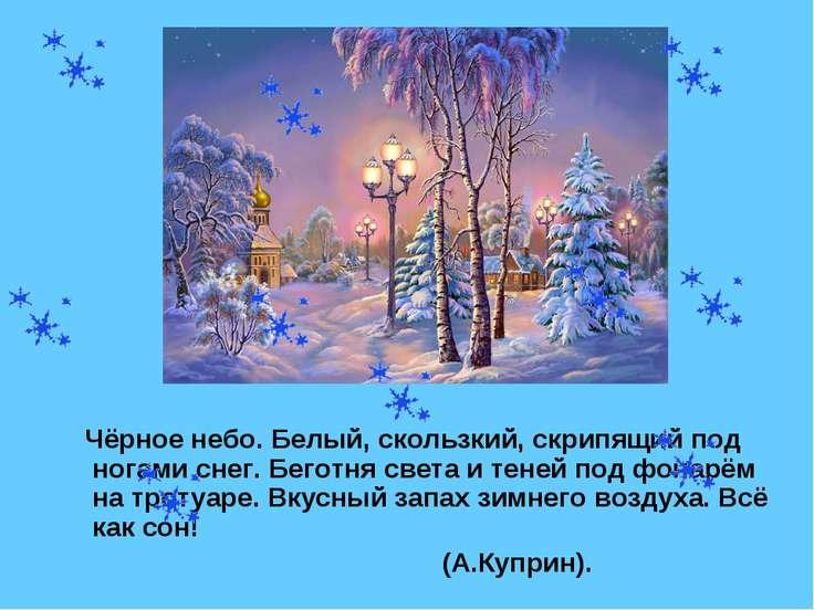 Чёрное небо. Белый, скользкий, скрипящий под ногами снег. Беготня света и тен...