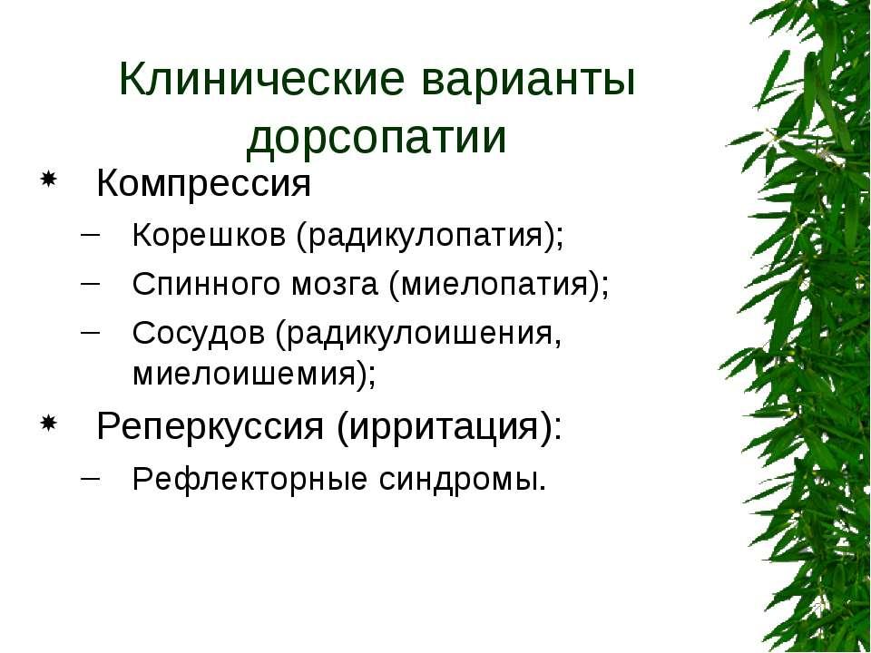 Клинические варианты дорсопатии Компрессия Корешков (радикулопатия); Спинного...