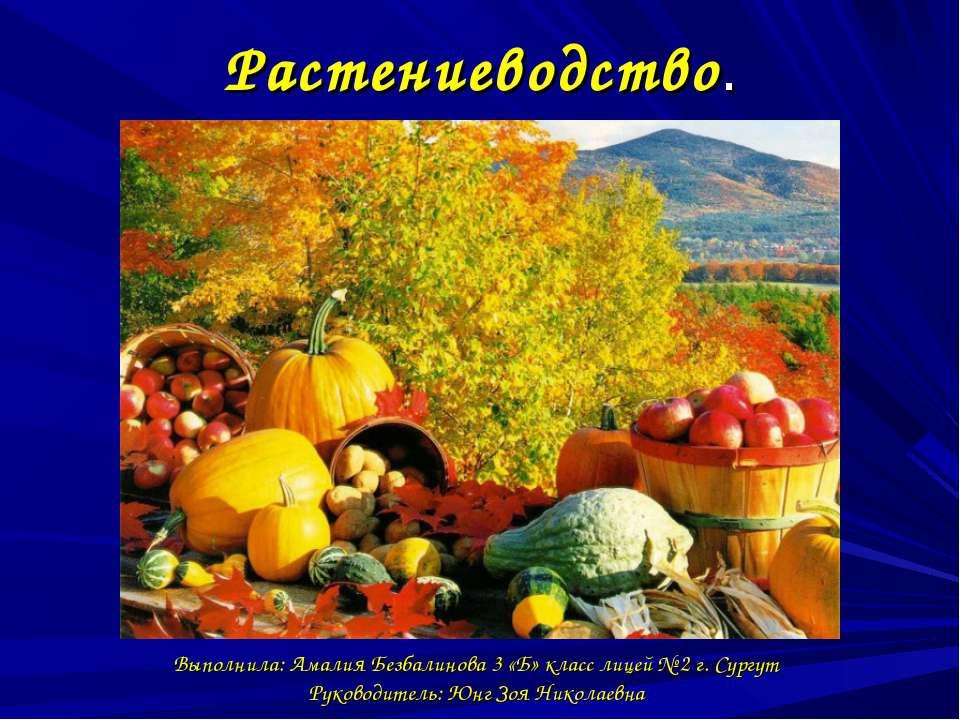 Растениеводство. Выполнила: Амалия Безбалинова 3 «Б» класс лицей № 2 г. Сургу...