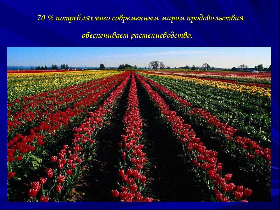 70 % потребляемого современным миром продовольствия обеспечивает растениеводс...