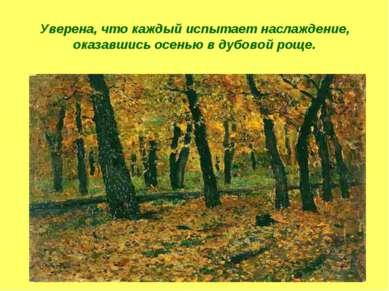 Уверена, что каждый испытает наслаждение, оказавшись осенью в дубовой роще.