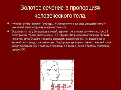 Золотое сечение в пропорциях человеческого тела. Человек- венец творения прир...