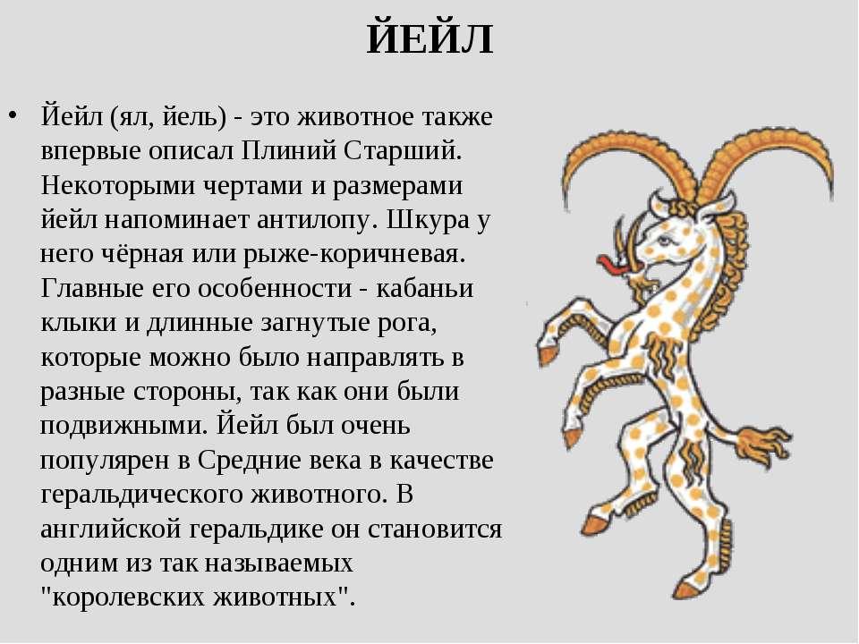ЙЕЙЛ Йейл (ял, йель) - это животное также впервые описал Плиний Старший. Неко...
