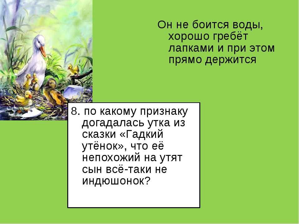 8. по какому признаку догадалась утка из сказки «Гадкий утёнок», что её непох...