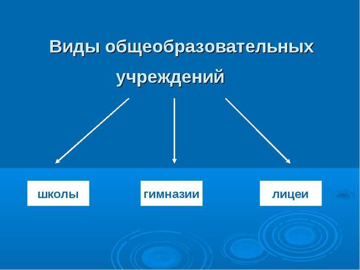 Виды общеобразовательных учреждений школы гимназии лицеи