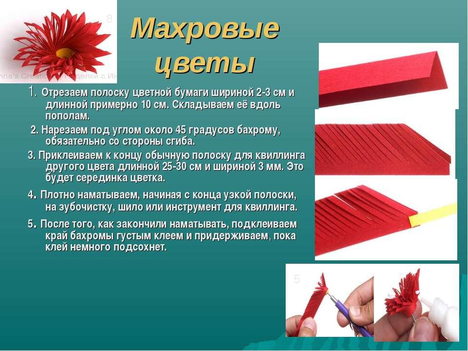 Махровые цветы 1. Отрезаем полоску цветной бумаги шириной 2-3 см и длинной пр...