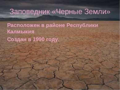 Заповедник «Черные Земли» Расположен в районе Республики Калмыкия Создан в 19...