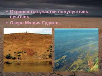 Охраняются участки полупустынь, пустынь. Озеро Маныч-Гудило.