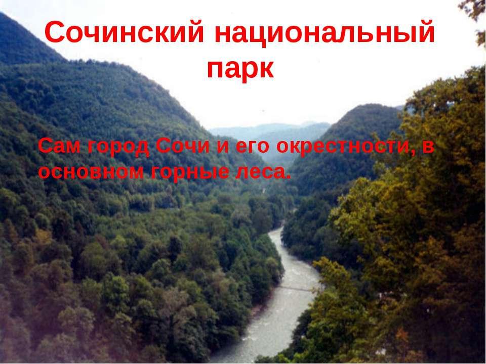Сочинский национальный парк Сам город Сочи и его окрестности, в основном горн...