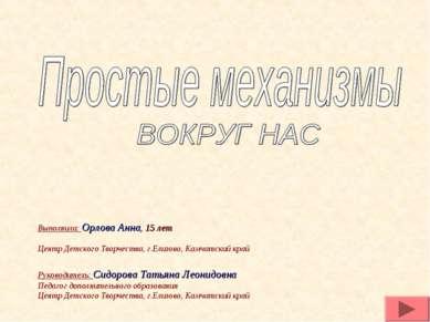Руководитель: Сидорова Татьяна Леонидовна Педагог дополнительного образования...